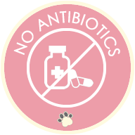 no antibiotic pet food - tampa rawpets